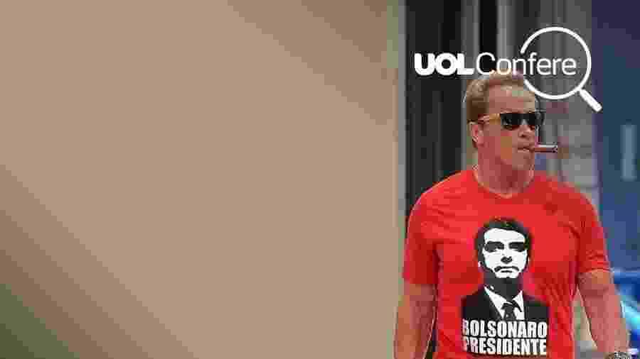 Foto de Arnold Schwarzenegger com camiseta de Bolsonaro é montagem - UOL confere