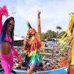 A cantora Elba Ramalho durante o desfile do Galo da Madrugada - Reprodução
