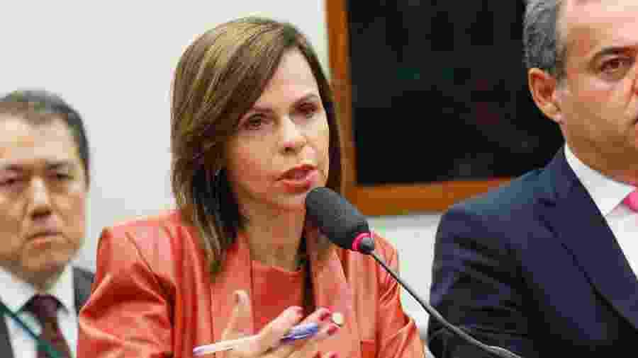 A deputada Professora Dorinha (DEM-TO) durante reunião da Comissão Especial do Fundeb em março deste ano - Luis Macedo/Câmara dos Deputados