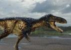 Como dinossauros trocaram os dentes aterrorizantes por bicos de aves (Foto: Todd Marshall/via Reuters)