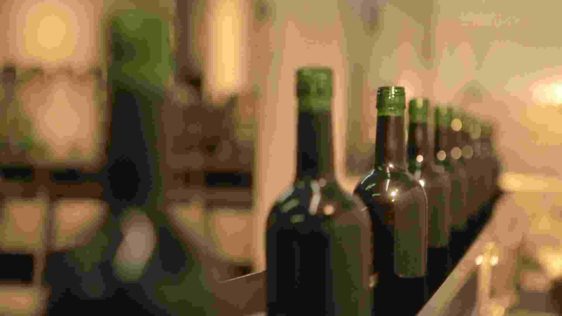 Produção de vinhos da Vinícola Góes - Divulgação