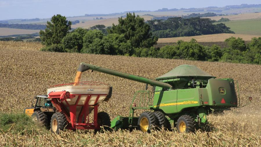 Paraná é um líderes na produtividade de soja e milho no Brasil  - Governo do Estado do Paraná/Divulgação