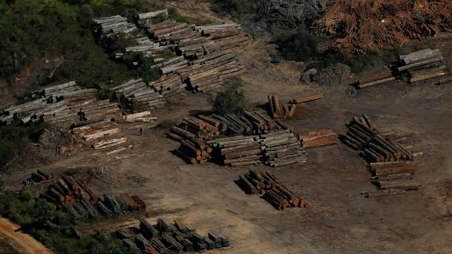 Toras de madeira são encontradas em Apuí (AM), durante ação do Ibama - Bruno Kelly/Reuters