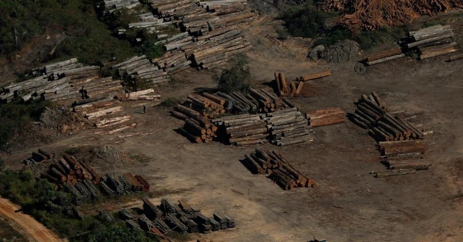 Toras de madeira são encontradas em Apuí (AM), durante ação do Ibama