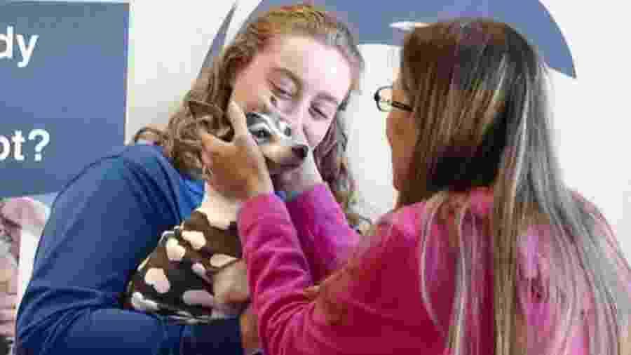 A fox terrier Dutchess fugiu quando sua dona estava trabalhando. O animal foi encontrado 12 anos depois, a 1.600 km de casa - Reprodução/CBS