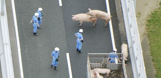 Caso aconteceu no Japão nesta quinta-feira