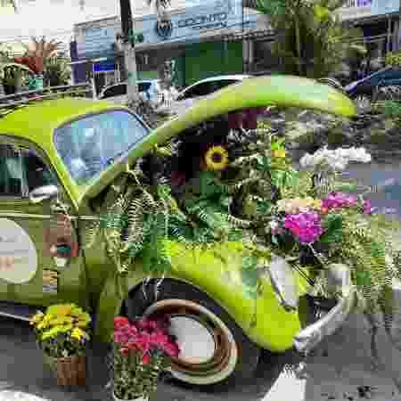 Valcineia Machado transformou um Fusca verde em uma floricultura, em Copacabana, no Rio de Janeiro - Arquivo pessoal - Arquivo pessoal