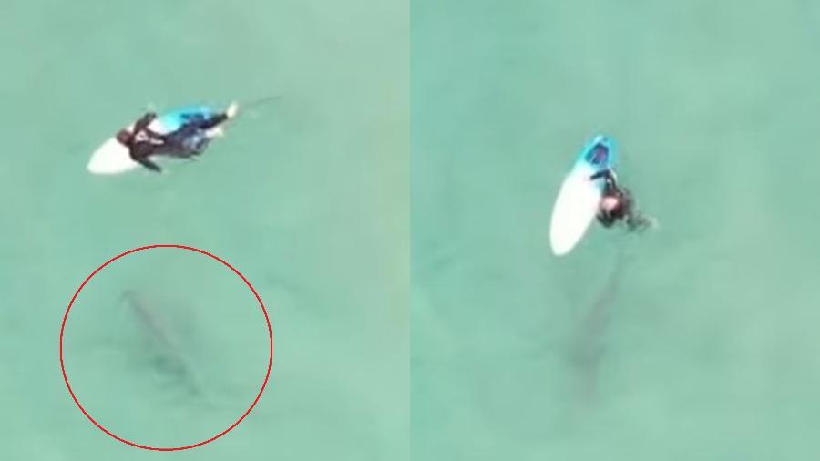 O surfista ainda parece ter pisado no tubarão no momento em que caiu da prancha - Reprodução/YouTube/7NEWS Austrália