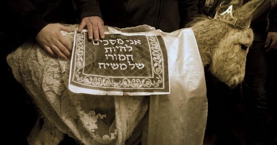"""6.fev.2016 - Judeus ultra-ortodoxo segura um burro vestido com um manto escrito em hebraico """"Eu concordo em ser o burro do Messias"""" onde pessoas rezam durante a cerimônia de Pidyon Peter Chamor, conhecida como """"Redenção do Primogênito"""" em Jerusalém, Israel"""