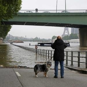 Homem anda com cachorro e tira foto em frente ao rio Sena, em Paris, que transbordou após dias de chuva