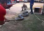 Sucuri de 6 metros e 100 quilos é capturada no Acre - Facebook/@cbmacre