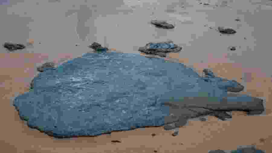 As manchas de óleo chegaram à Bahia no dia 4 - Divulgação/Adema