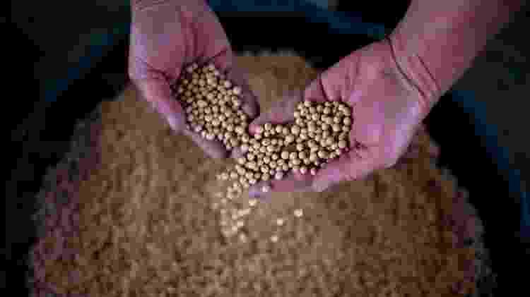 As exportações de produtos agrícolas dos EUA para a China, como a soja, caíram drasticamente devido à guerra comercial - Getty Images - Getty Images