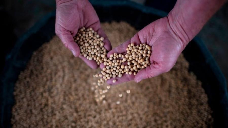 Troyjo acredita que vai haver um deslocamento mundial da demanda agrícola - Getty Images