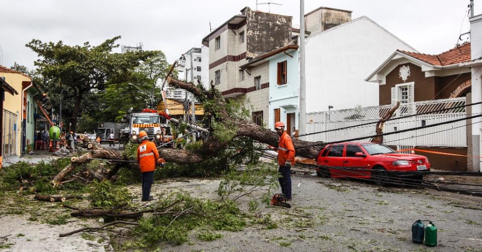 21.out.2016 - Funcionários retiram árvores que caíram durante a chuva desta quinta-feira (20), na rua Albion, em São Paulo