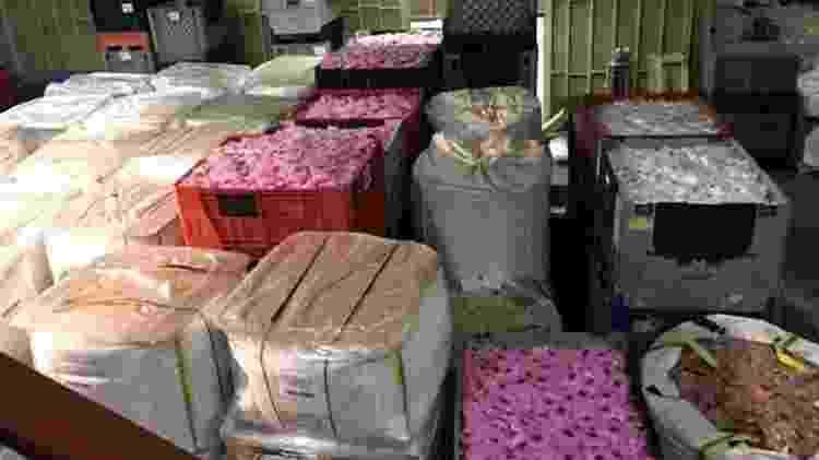 Produtos de slime prontos para serem transportados por todo o mundo a partir de fábrica em Blackburn - BBC