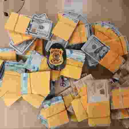 Polícia Federal apreendeu U$ 730 mil e mais de R$ 1,8 milhão em espécie em um imóvel em obra em Santos (SP) - Divulgação/PF