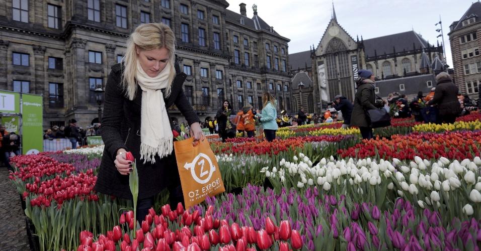 16.jan.2016 - Uma mulher pega tulipas que foram colocadas em frente ao Palácio Real na praça Dam, em Amsterdã, na Holanda, neste sábado. A ação celebra o início da época das tulipas na região