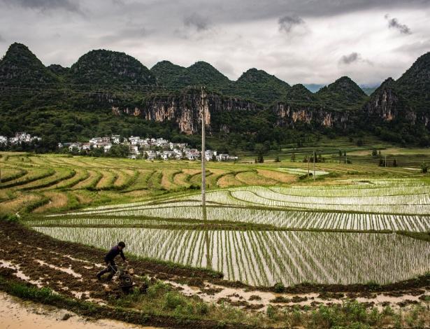 Agricultor trabalha em plantação na vila de Zhongxin, na China