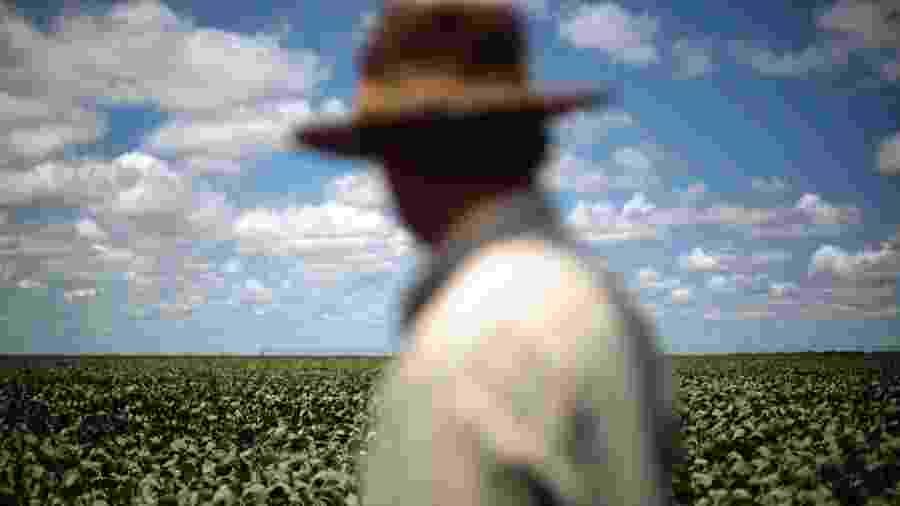 Agricultor observa plantio de soja em Barreiras, na Bahia - Ueslei Marcelino