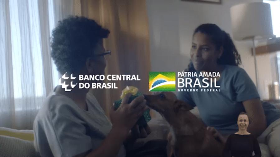 Vira-lata caramelo aparece na última cena do vídeo de divulgação - Banco Central/Divulgação