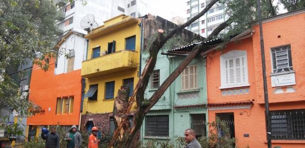Funcionários da prefeitura trabalham na remoção de árvore no bairro Santa Cecília
