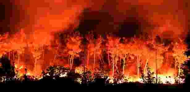Incêndio florestal em Les Pennes-Mirabeau, ao norte de Marselha (França) - Boris Horvat/AFP
