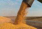 Guerra comercial converte mercado mundial de soja em carrossel - Getty Images