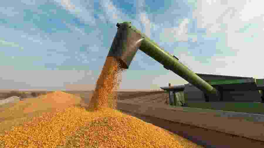 lavoura, soja, plantação, agricultura, commodities, colheita - Getty Images
