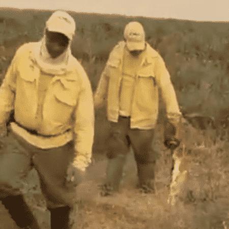 Brigadista aplicando técnica de expansão do fogo no Pantanal em vídeo que circula nas redes sociais com mensagem incorreta de que o grupo estaria provocando um incêndio, e não combatendo o fogo - Reprodução
