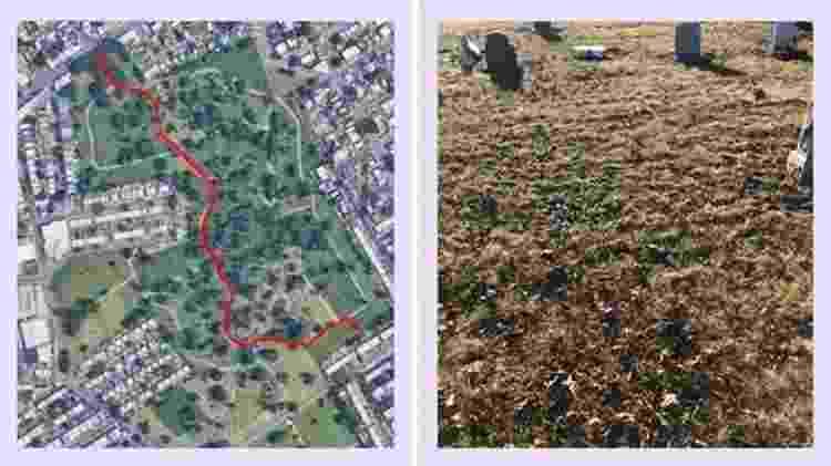 Sepultura anônima de Murray Hall no Cemitério Mount Olivet, em Queens, Nova York - Google/BBC
