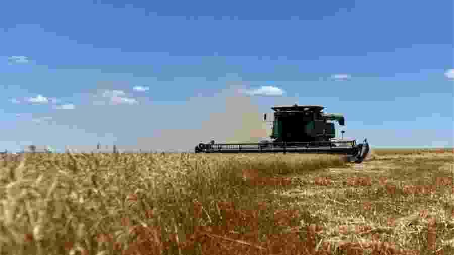 Nos Estados Unidos, apenas 10% do setor automotivo consome etanol; já no Brasil, esse número chega a 46% da frota - Reuters