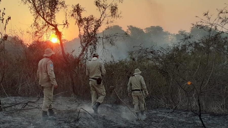 Bombeiros combatem incêndio na região de Porto Morrinho, Mato Grosso do Sul - CBMMS/Reprodução