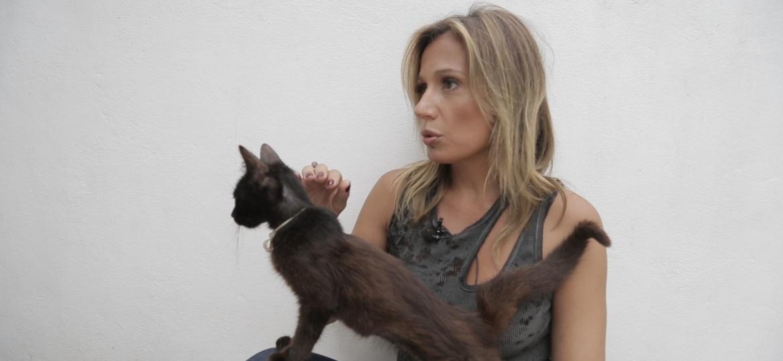A ativista dos direitos dos animais, Luisa Mell - Reprodução/TV UOL