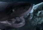 O momento em que tubarões gigantes atacam tripulação de submarino - BBC