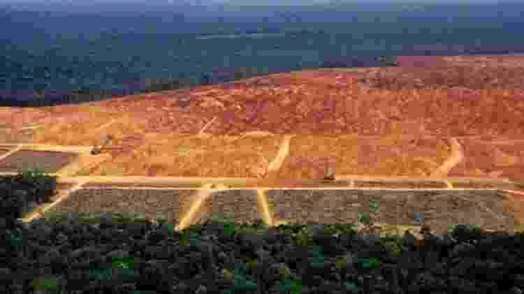 A destruição da vegetação nativa e as mudanças climáticas vão prejudicar diretamente o agronegócio no Brasil - Getty Images/BBC - Getty Images/BBC