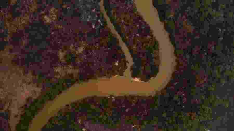 Imagens mostram devastação do fogo na região do Pantanal - Mauro Pimentel/AFP