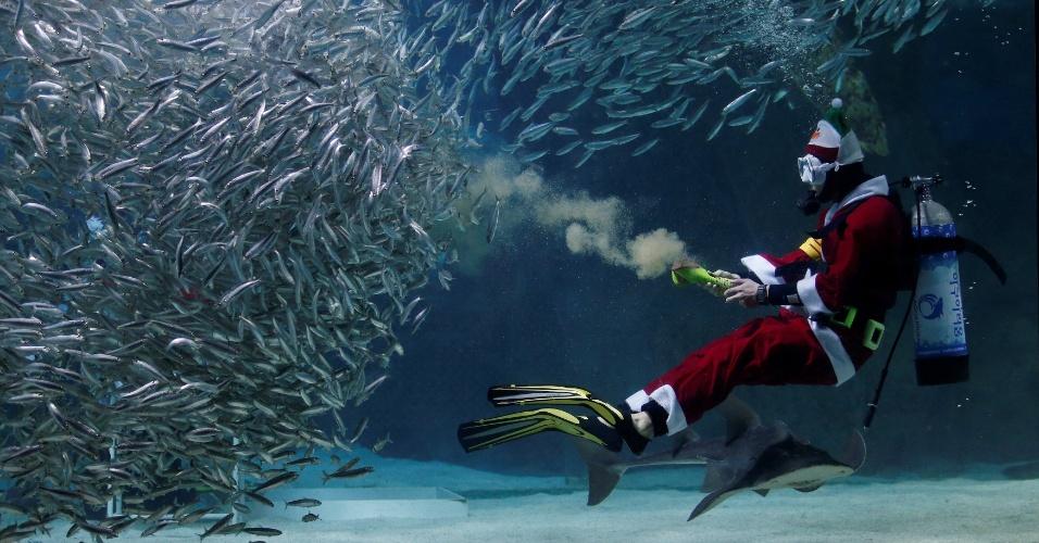 17.dez.2016 - Papai Noel mergulhador alimenta sardinhas no aquário Coex, em Seul, na Coreia do Sul