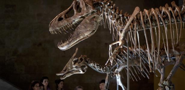 Tarbossauro (Tarbosaurus bataar), um primo distante do Tiranossauro Rex