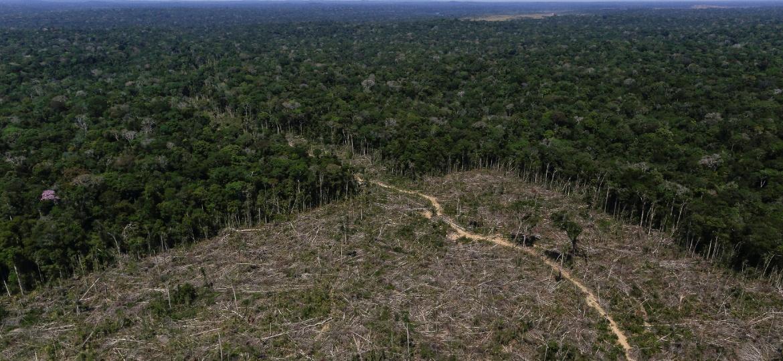 """Área de desmatamento em Apuí (AM) é registrada em imagem aérea durante """"Operação Área Verde"""", realizada pelo Ibama - Bruno Kelly/Reuters"""