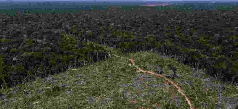Área de desmatamento em Apuí (AM) é registrada em imagem aérea durante Operação Área Verde, realizada pelo Ibama - Bruno Kelly/Reuters