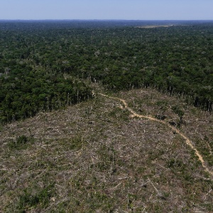 Área de desmatamento em Apuí (AM), na Amazônia - Bruno Kelly/Reuters