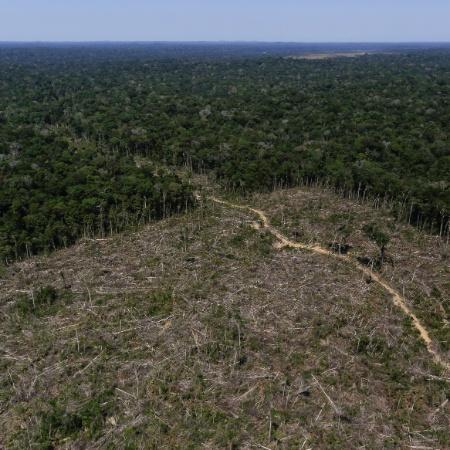 Área de desmatamento em Apuí (AM) é registrada em imagem aérea - Bruno Kelly/Reuters