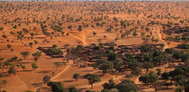 A incrível descoberta de centenas de milhões de árvores no deserto do Saara