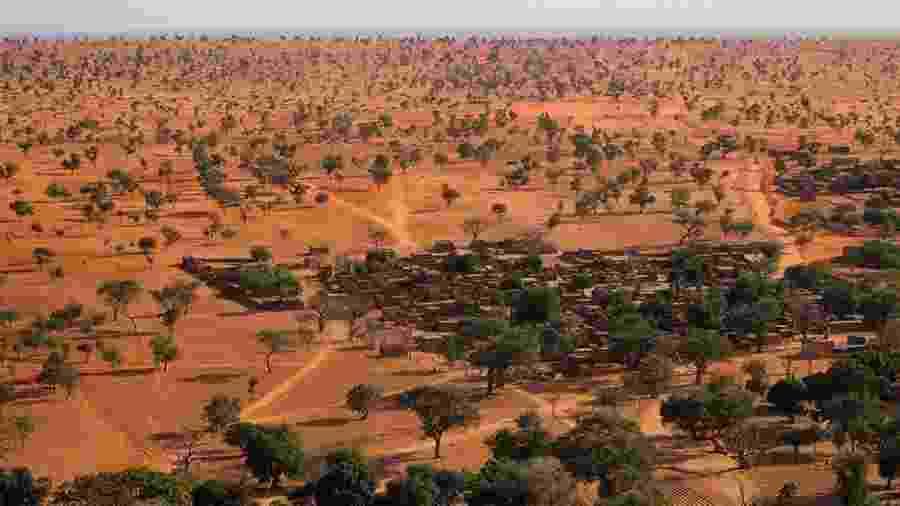 O Saara e o Sahel têm muito mais árvores do que se pensava - Martin Brandt