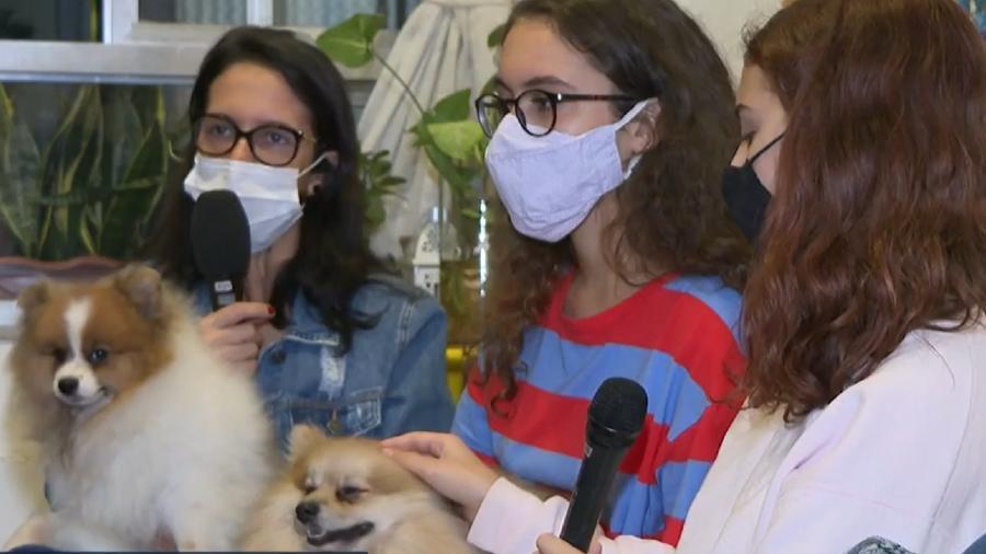 Família recuperou cachorros no RJ - Reprodução/Globoplay Bom Dia Rio