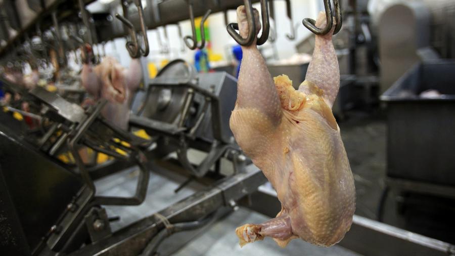 Adidos agrícolas pediram uma cópia do laudo das amostras que testaram positivo para coronavírus - Getty Images