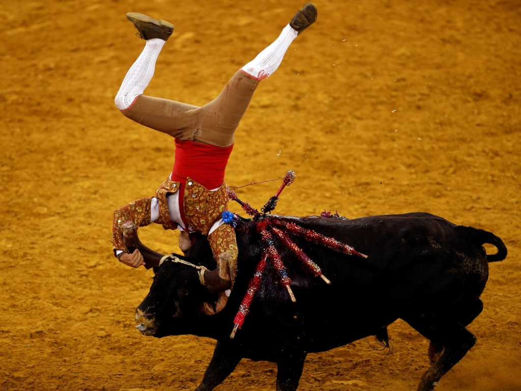 29.jul.2016 - Toureiro executa manobra e fica de cabeça para baixo durante tourada na praça de Touros do Campo Pequeno, em Lisboa, Portugal