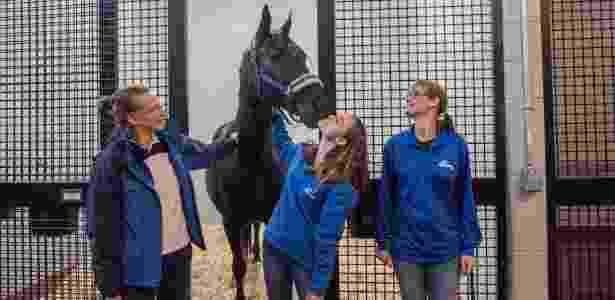 Funcionários cuidam de cavalo em centro especial para animais VIP no aeroporto JFK, em NY - Johnny Milano/The New York Time
