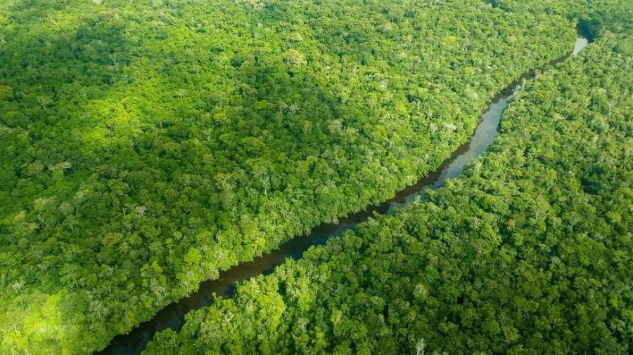 Noruega é responsável por mais de 90% das doações do Fundo Amazônia - Larissa Rodrigues